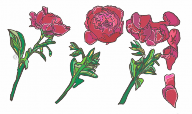 Three Roses, colored