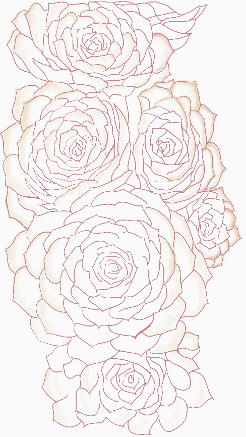 Six Succulents - v.2 Highlighted Edges