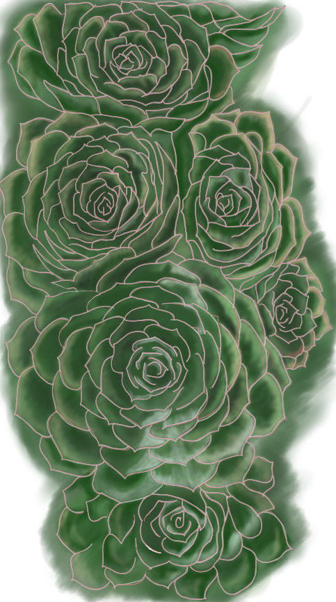 Six Succulents - v.2 WIP, Full Image