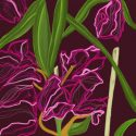 Purple Orchids – Chalk (digital)