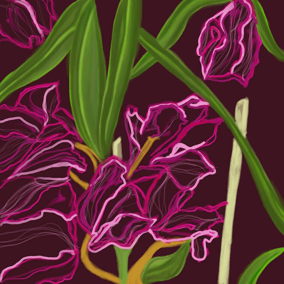 Chalk Orchids - Digital Art