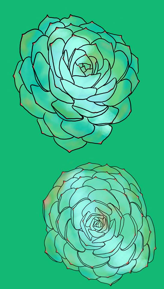 Succulent Pair - Digital